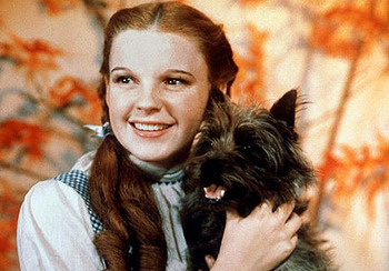 toto-from-wizard-of-oz-with-judy-garland_display_image